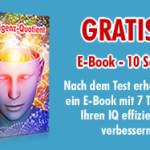 IQ testen
